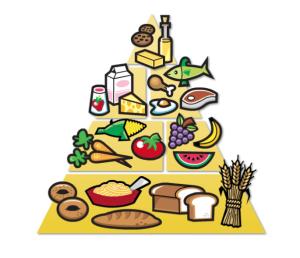 food-pyramid-2